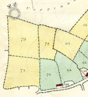Detail from Survey of the Estates on the Isle of Wight, 1817