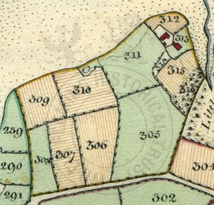 Detail of Ashlake from Survey of the Estates on the Isle of Wight, 1817